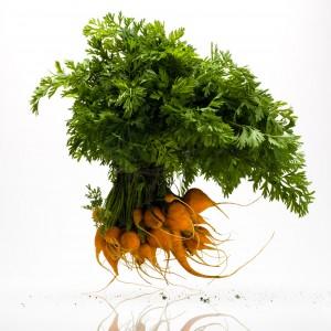 Thumbnail Carrots